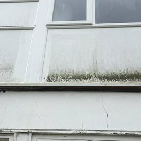 Grime build up on a residential house
